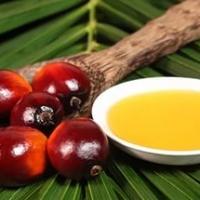 Пальмовое масло. 500 г