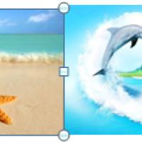 """Водорастворимые картинки """"морские"""""""