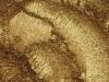 Пигмент перламутровый Бронзовый, 5г