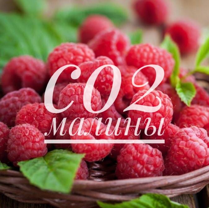 СО2 экстрат малины, 10г