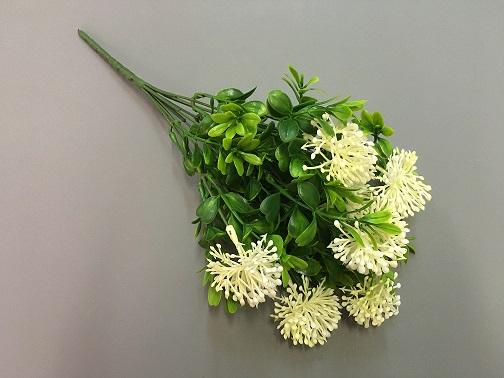 Куст самшита, цветок белый