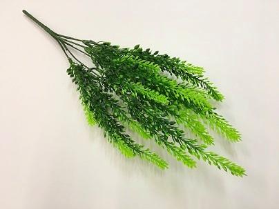 Лавандовая ветка зеленая