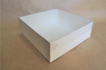 Коробка с прозрачной крышкой 20*20*7см