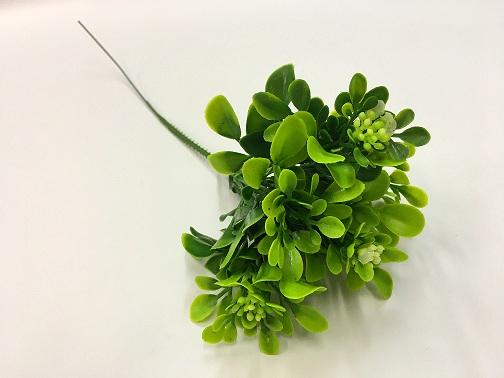 Веточка зелени с цветочками малая