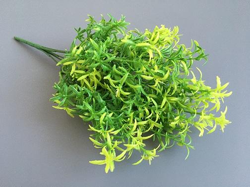 Веточка зелени Аспарагус
