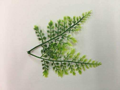 Листья петрушки, 5 шт