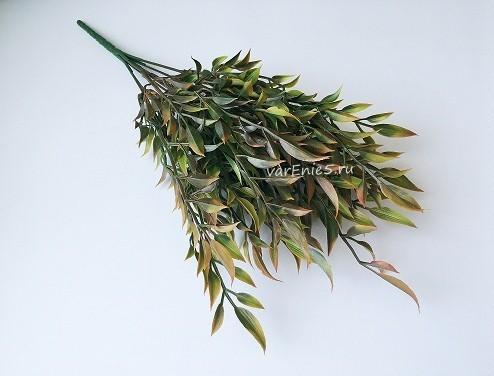 Веточка зелени барбарис