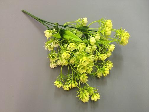 Ветка зелени клевер желтый