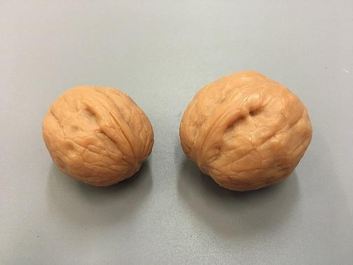 Силиконовая форма Грецкий орех, 2 шт