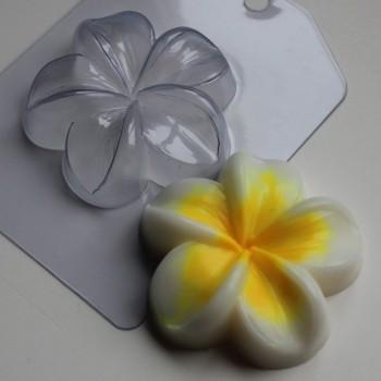 Пластиковая форма Плюмерия