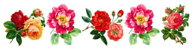 Водорастворимые картинки цветы