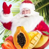 Отдушка Остров Рождества 10г