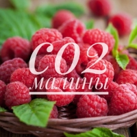 СО2 экстрат малины, 50г