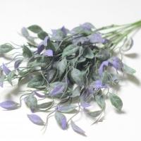 Букет зелени свисающий, лист фиолетовый