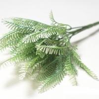 Букет зелени мимоза бело-зеленый