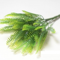 Букет зелени мимоза
