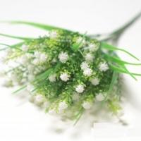 веточка пырея, цветки белые