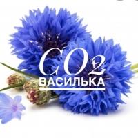 СО2 экстракт василька, 10 г