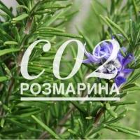 СО2 экстрат розмарина, 50г