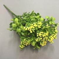 Куст карриса, желтые цветы