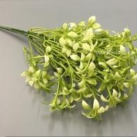 Веточка зелени куст луговой, белый