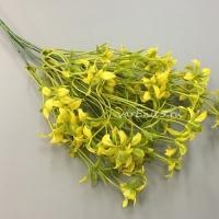 Веточка зелени куст луговой, желтый