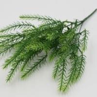Ветка зелени Баранец