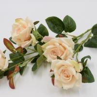 Ветка розы с бутонами в ассорт.