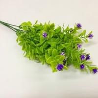 Букет зелени цветочки-ежики фиолетовый