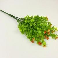 Букет зелени цветочки-ежики оранжевый