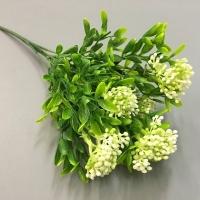 веточка зелени морошка, белые ягодки