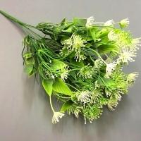 Веточка зелени укроп, цветы белые