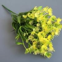 Веточка зелени укроп, цветы желтые
