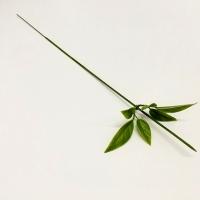 Стебель с листиками, 1 шт