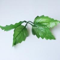 Листья хризантемы, 10 шт
