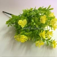 веточка зелени самшит и орхидея