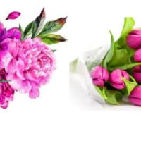 Водорастворимые картинки Пион/тюльпаны