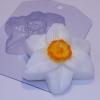 Пластиковая форма Нарцисс
