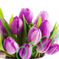 Водорастворимые картинки Тюльпаны под корзинку