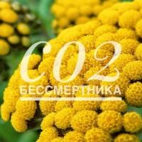 СО2 экстрат бессмертника, 10г