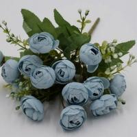 Камелия голубая