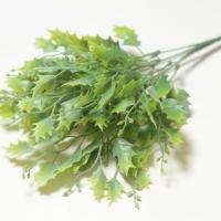 Букет клена зеленый