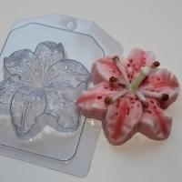 Пластиковая форма Лилия