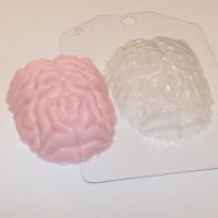 Пластиковая форма Мозг