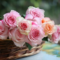 Отдушка Свежесрезанные розы. 10г