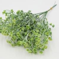 Веточка зелени срез хлоя